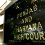 High court rejects petition seeking commission of inquiry into Amritsar hospital covid victims' body swapping case